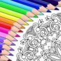 70x70 - Colorfy